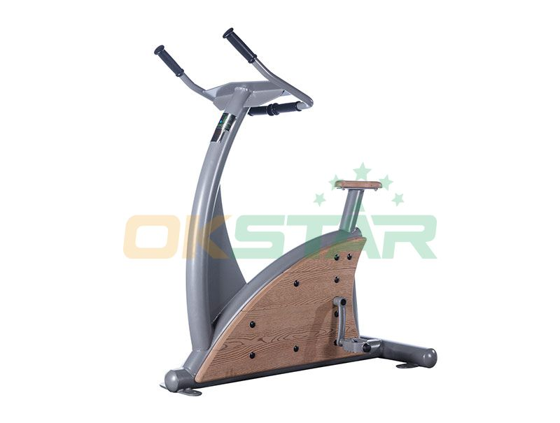 LK-Z01 wpc outdoor exercise equipment Fitness Bike