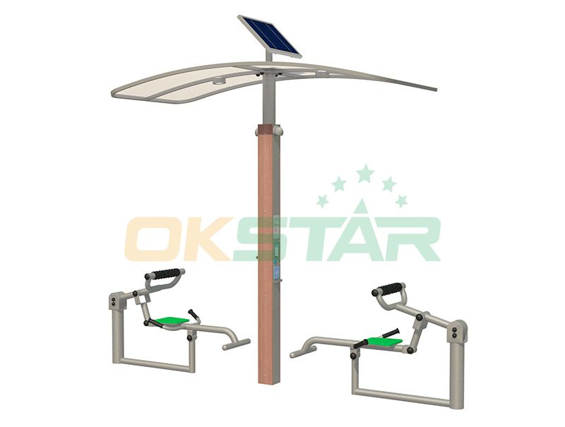 ISO approved outdoor gym equipment Back trainer
